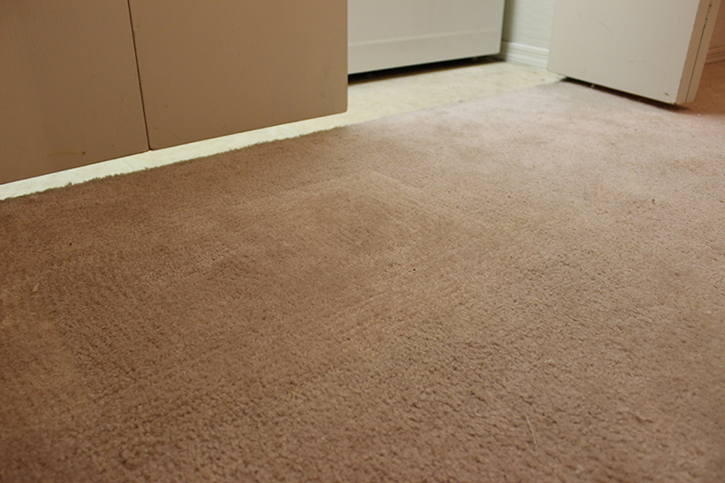 Bleach Spot Carpet Dyeing Seattle Carpet Repair Stretching