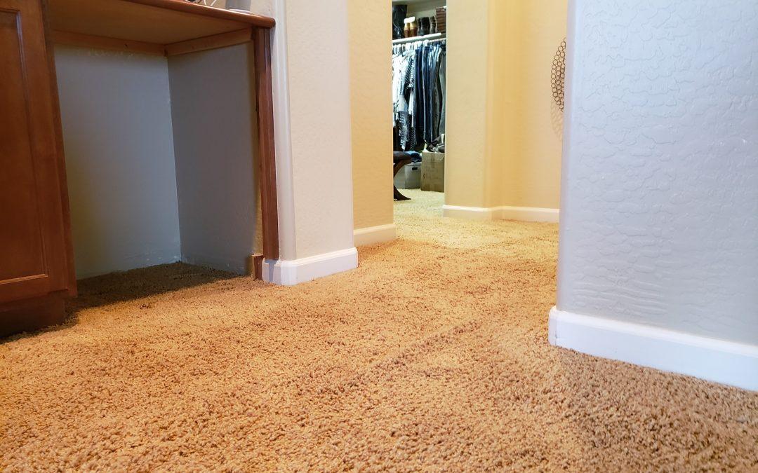Seattle, WA: Carpet Stretching